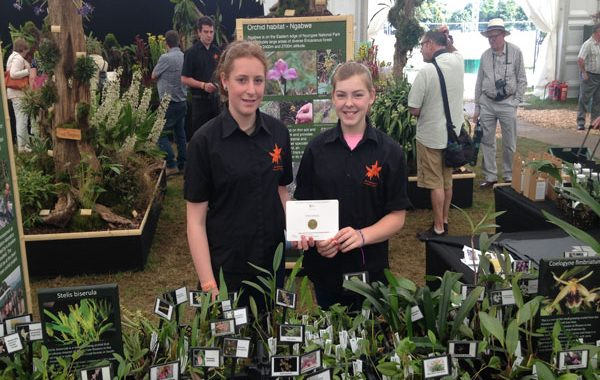 Orchid Project celebrates a Gold Medal at Hampton Court Flower Show