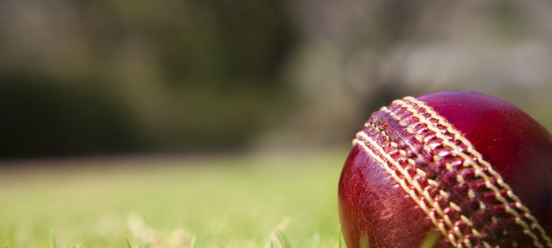 Cricket Report