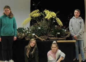 Orchid Project at Orchid Society's Annual Show in Cheltenham