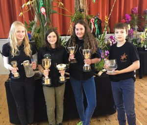 Success at the Devon Orchid Show