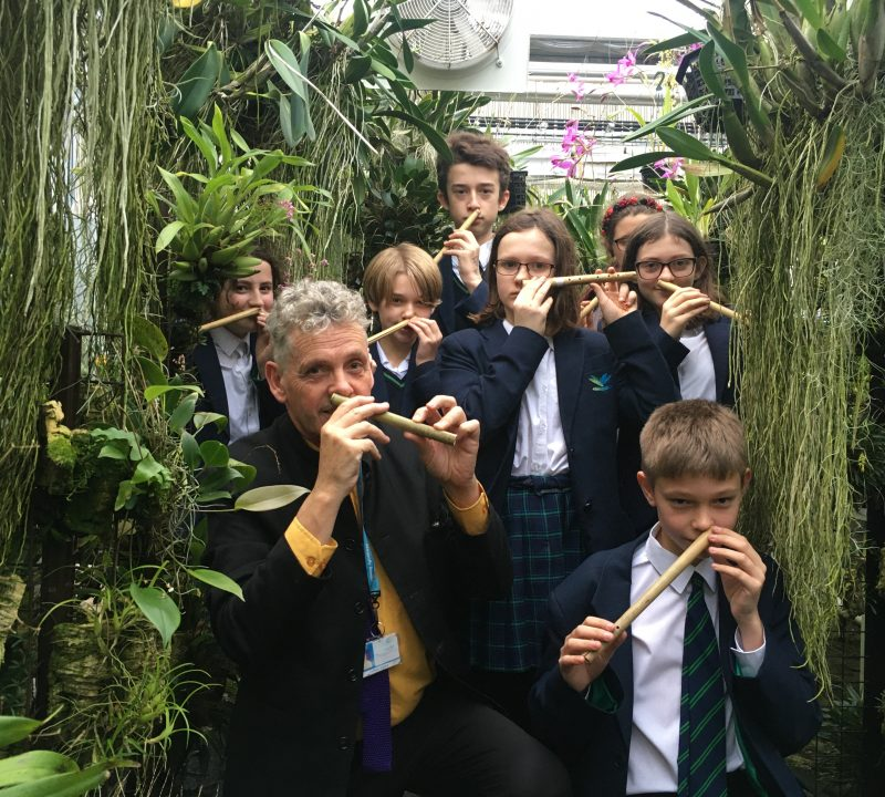 Nose Flute Orchestra Live at Writhlington Orchid Show