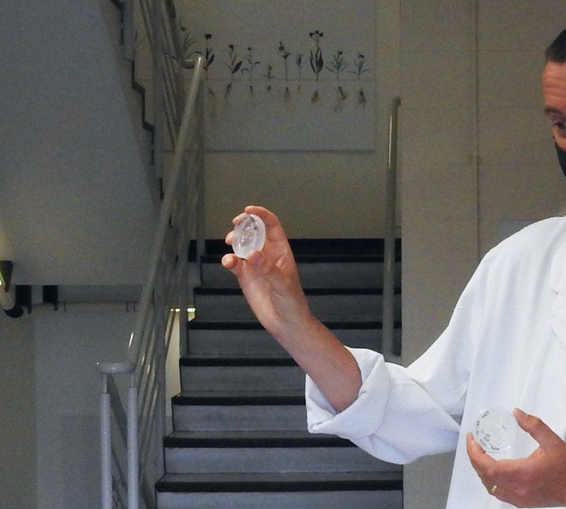 Sixth Form Students Visit Kew Scientist
